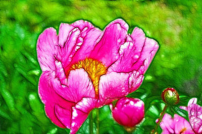 Flowergreetings Painting - Chinese Peony Flower by Lanjee Chee