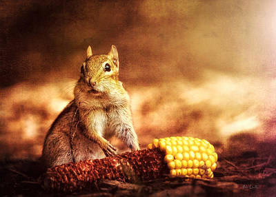 Chipmunk With Corn Print by Bob Orsillo