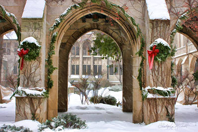 Symmetry Painting - Christmas Arch by Christopher Arndt
