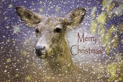 Christmas Deer Print by Jean OKeeffe Macro Abundance Art