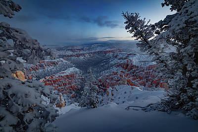 Christmas Lights Photograph - Christmas Light by Edgars Erglis