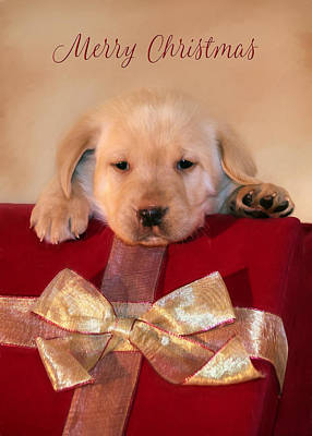 Christmas Greeting Mixed Media - Christmas Puppy by Lori Deiter