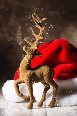 Christmas Reindeer Print by Amanda And Christopher Elwell