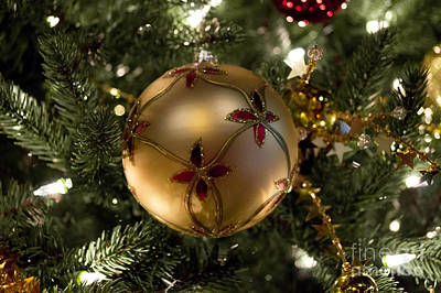 Trees Photograph - Christmas Spirit by Chris Baboolal