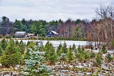 Farm Photograph - Christmas Tree Farm by JAMART Photography