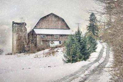 Photograph - Christmas Tree Hill by Lori Deiter