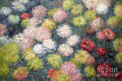 Claude Painting - Chrysanthemums by Claude Monet