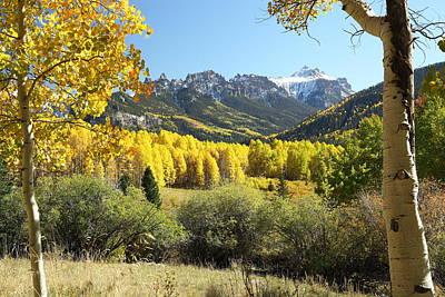 West Fork Photograph - Cimarron Gold by Eric Glaser