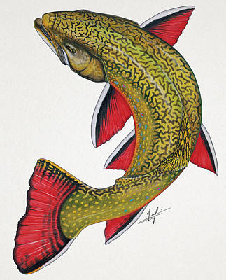 Brook Trout Painting - Circling Brook Trout by Nick Laferriere