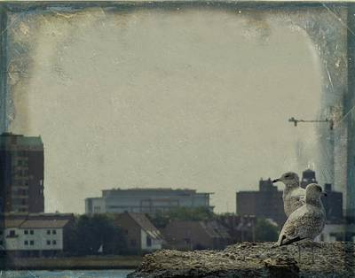 Eerie Digital Art - City Seagulls by Gothicolors Donna