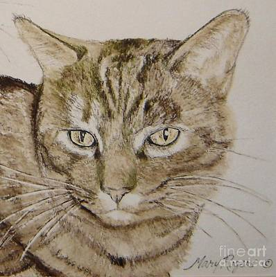 Cat Mixed Media - Clarise by Mary Rogers