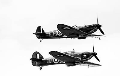 Photograph - Classic Flight  by Cliff Norton