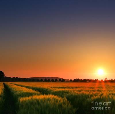 Cornfield Digital Art - Clear Sunset by Franziskus Pfleghart