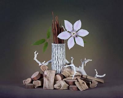 Log Photograph - Clematis Blossom by Tom Mc Nemar