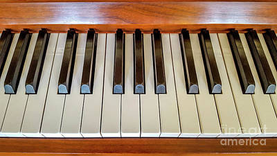 Keyboards Photograph - Close Up Of Piano Keyboard by Bernard Jaubert