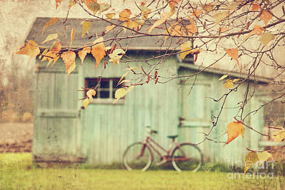 Closeup Of Leaves With Old Barn In Background Print by Sandra Cunningham