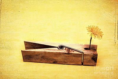 Clothespins And Dandelions Print by Ryan Jorgensen