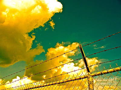 Transcend Photograph - Clouds Like Deer Leaping  by Chuck Taylor