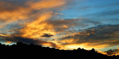 Fluttering Photograph - Clouds Of Liquid Gold by Glenn McCarthy Art and Photography