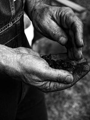 Mining Photograph - Coal Hands by Brian Mollenkopf