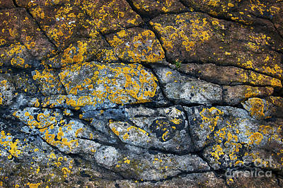 Abstract Creations Photograph - Coastal Colors by Tim Gainey