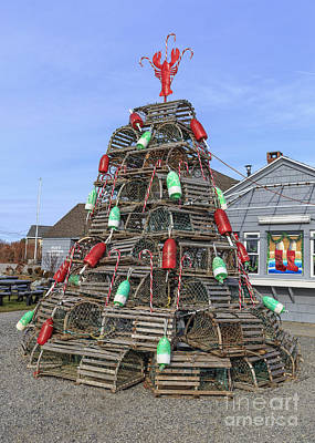 Lobster Traps Photograph - Coastal Maine Christmas Tree by Edward Fielding