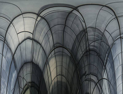 Cobweb Cathedral Print by Luc Vangindertael