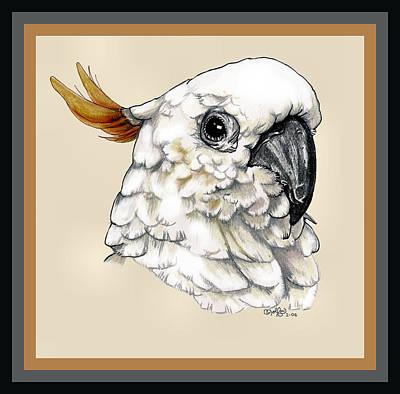Cockatoo Drawing - Cockatoo by Crystal Rolfe