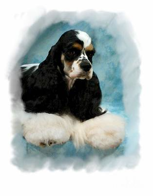 Cocker Spaniel 814 Print by Larry Matthews