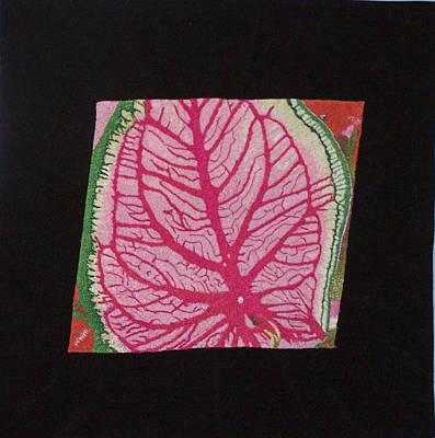 Coleus Print by Jenny Williams