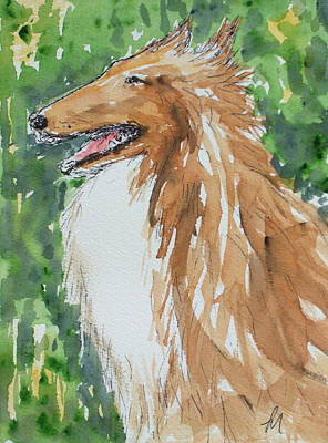 Collie Print by Pete Maier