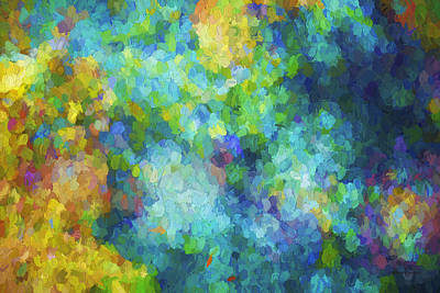 Color Abstraction Xliv Print by David Gordon