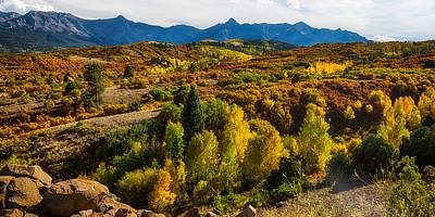 Colorado Fall Foliage Color Panorama Print by James BO  Insogna