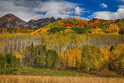 Aspen Trees Photograph - Colorado Kebler Pass Fall Beauty by James BO  Insogna