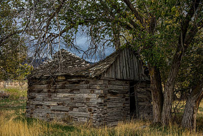 Colorado Log Cabin Print by Paul Freidlund