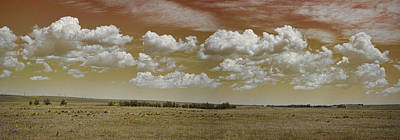 Photograph - Colorado Pano 1 by Paulette B Wright
