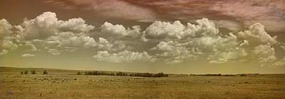 Photograph - Colorado Pano 2 by Paulette B Wright