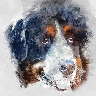 Portrait Painting - Colorful Bernese Mountain Dog Portrait - By Diana Van by Diana Van