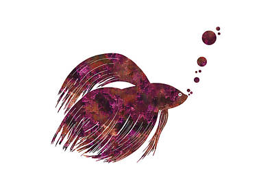Colorful Betta Fish Silhouette Print by Shara Lee