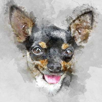 Colorful Chihuahua Dog Portrait - By Diana Van Print by Diana Van