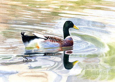 Waterfowl Painting - Colorful Duck Reflections by Sharon Freeman