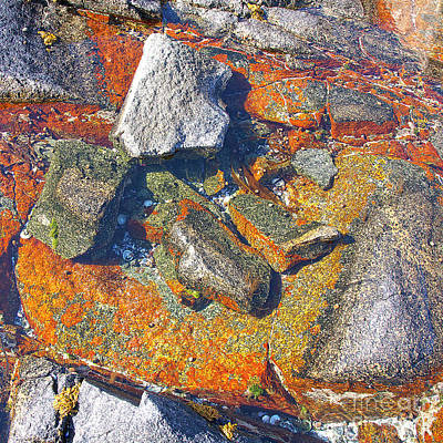 Colorful Earth History Print by Heiko Koehrer-Wagner