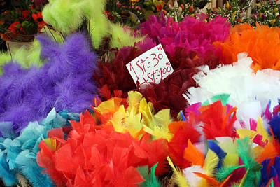 Stockholm Photograph - Colorful Easter Feathers by Linda Woods