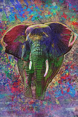 Colorful Elephant Print by Jack Zulli