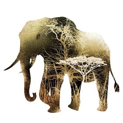 Elephant Digital Art - Colorful Elephant by Diana Van