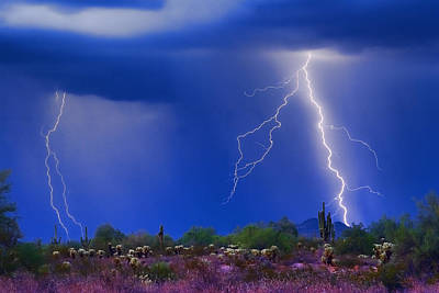 Saguaro Photograph - Colorful Sonoran Desert Storm by James BO  Insogna