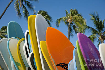 Mauna Kea Photograph - Colorful Surfboards by Ron Dahlquist - Printscapes