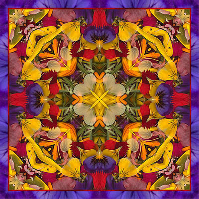 Mandala Photograph - Colorific by Bell And Todd