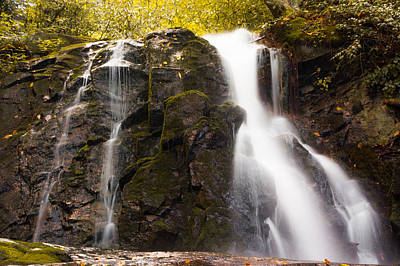 Waterfall Photograph - Colors At Laurel Falls by Shelby Young