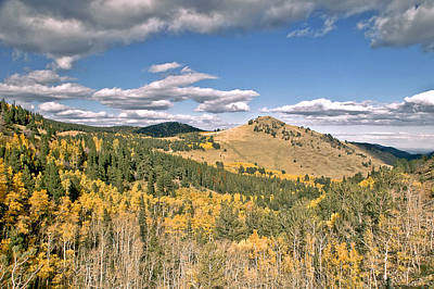 Colors In Colorado Print by James Steele